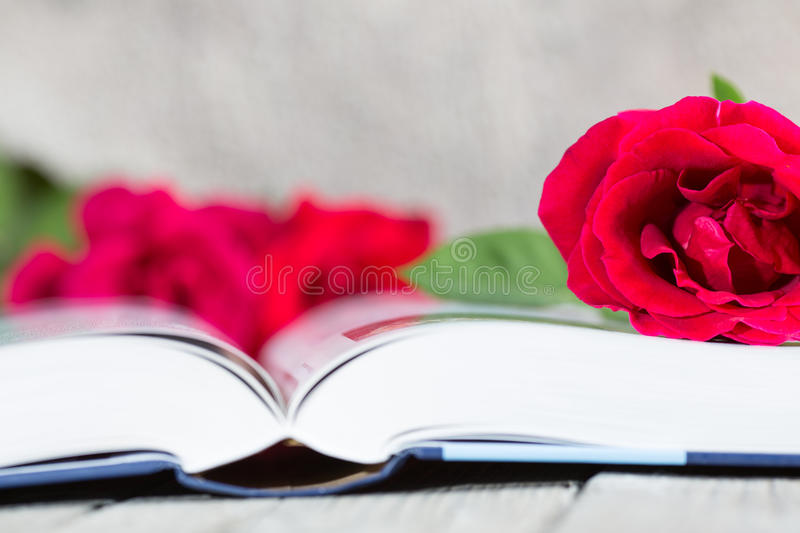 Book Day. It is a day that they traditionally Catalunya couples a rose i give away a book royalty free stock photo