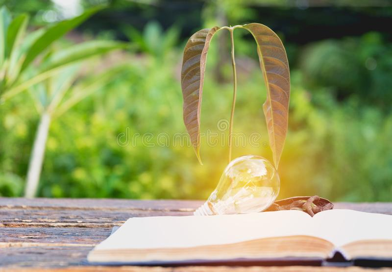 Book with glowing light bulb over it on wooden table. And nature background. Knowledge, education concept stock photography