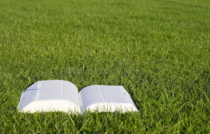 Book on grass stock images