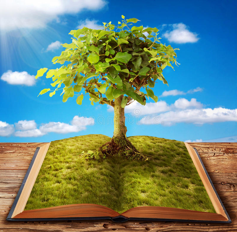Book of knowledge royalty free stock images