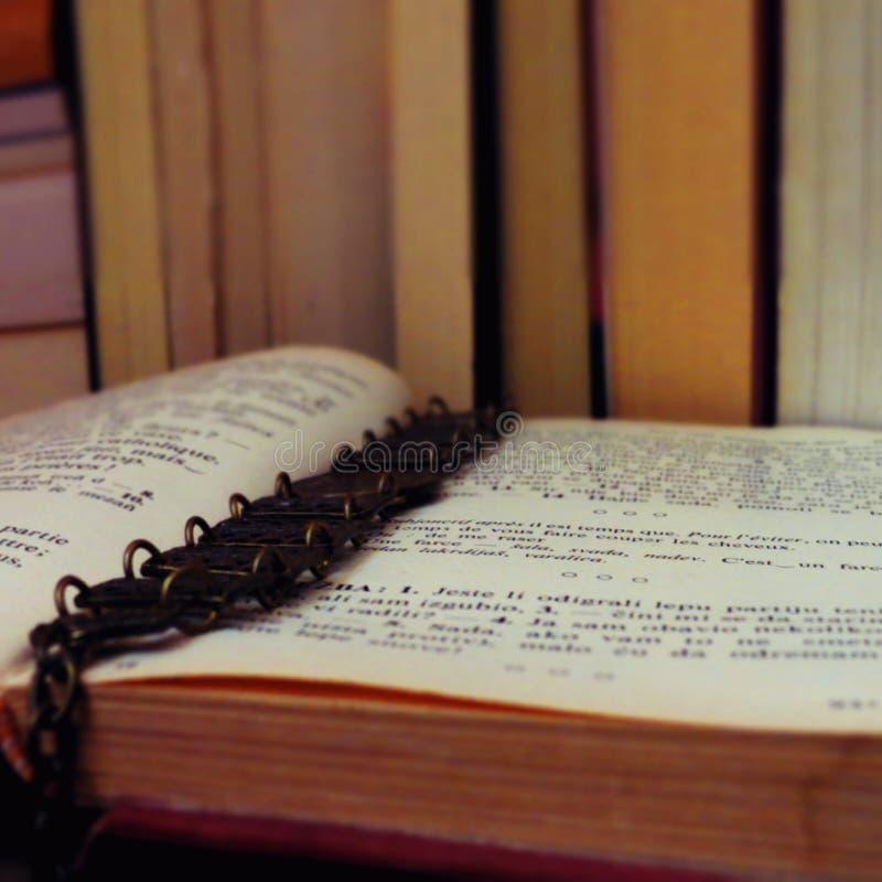 Book lover stock photos