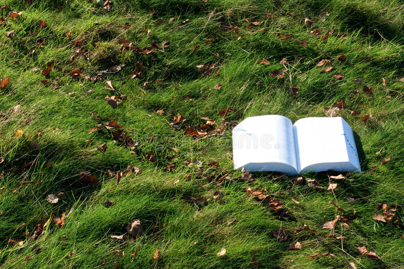 Download Book lying open on grass stock photo. Image of rural - 40213096