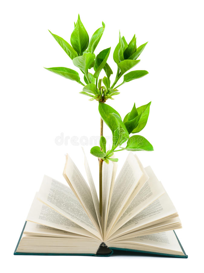 Download Book and plant stock image. Image of cover, literature - 13177741