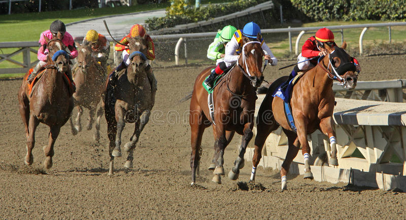 Book Review Wins 2012 The La Brea Stakes royalty free stock image