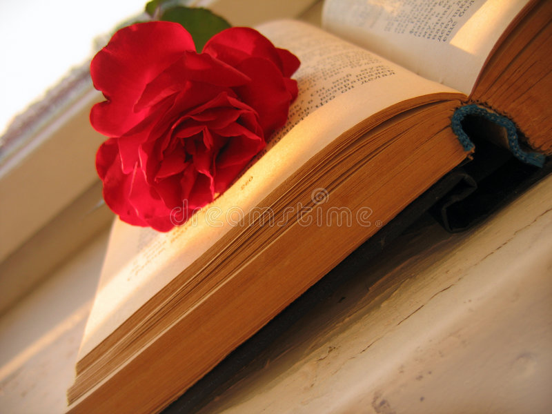 Book of romance in the morning stock photography