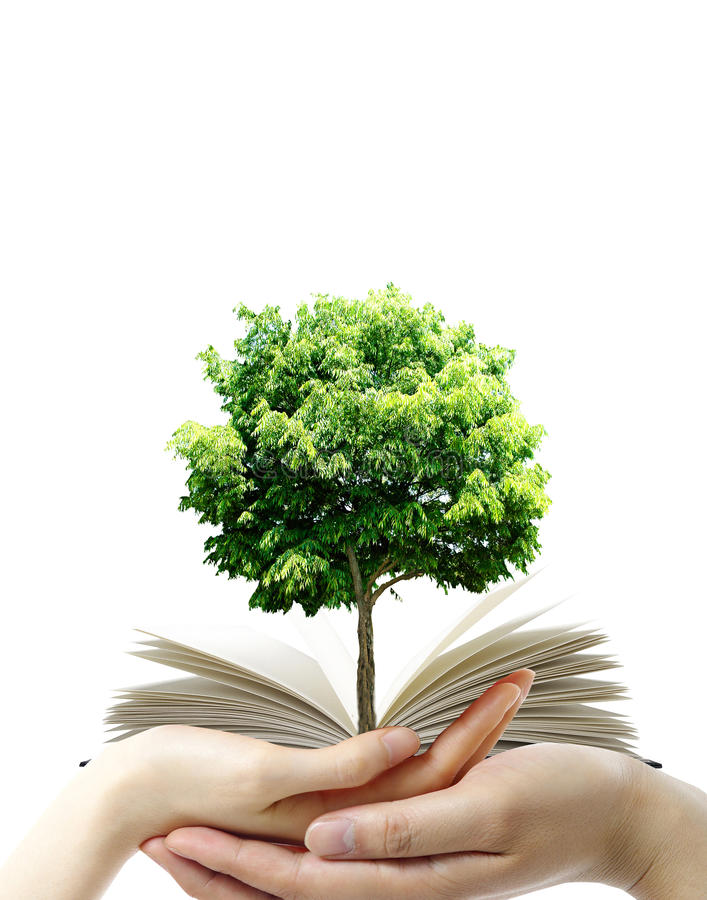 Download Book in thr hands stock photo. Image of learn, education - 18538782