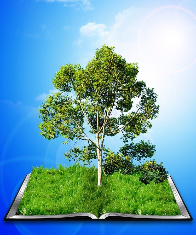 Download Book tree stock illustration. Image of illuminated, literature - 21052149