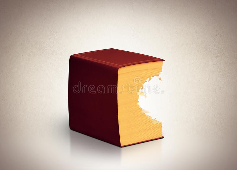 Book. Very big book in brown leather binding royalty free stock photos