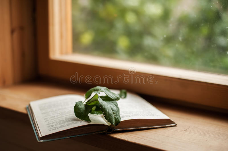 Book and window royalty free stock images