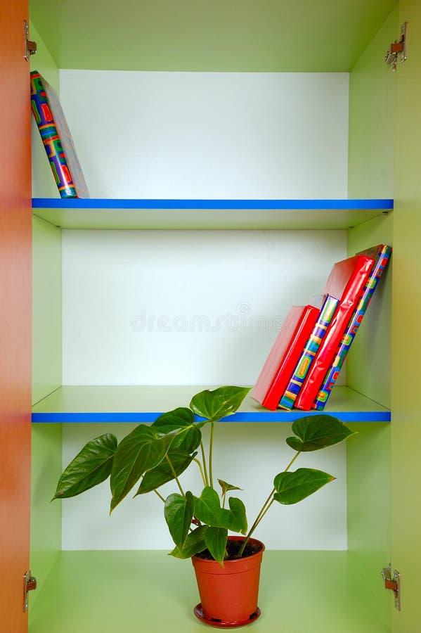 bookcase записывает завод стоковые фотографии rf