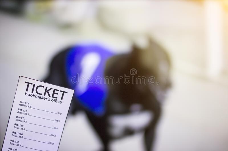 Bookmaker ticket on the background of the TV on which the dog shows run, sports betting, bookmaker. Bookmaker ticket on the background of the TV on which the dog royalty free stock photography