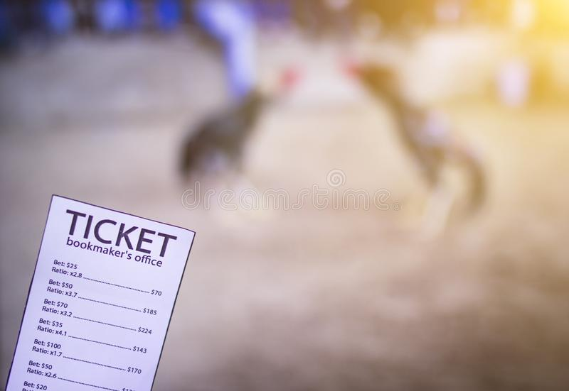 Bookmaker ticket on the background of the TV, which shows cockfighting, sports betting, cock-fights. Bookmaker stock photo