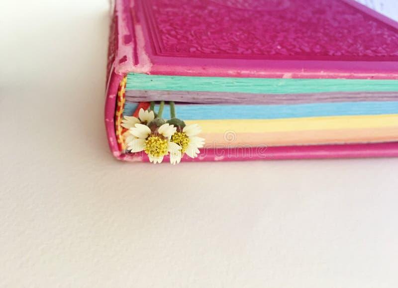 bookmark imagen de archivo libre de regalías