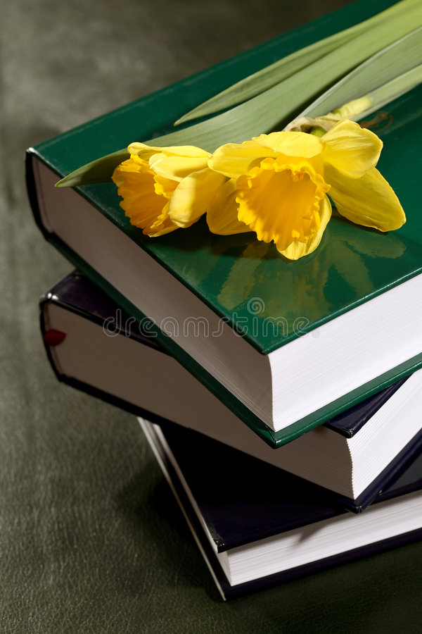 Download Books stock photo. Image of book, background, arrangement - 4349942