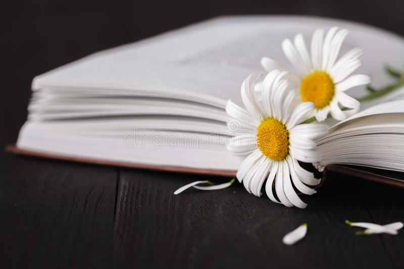 Books with bouquet of flowers royalty free stock images