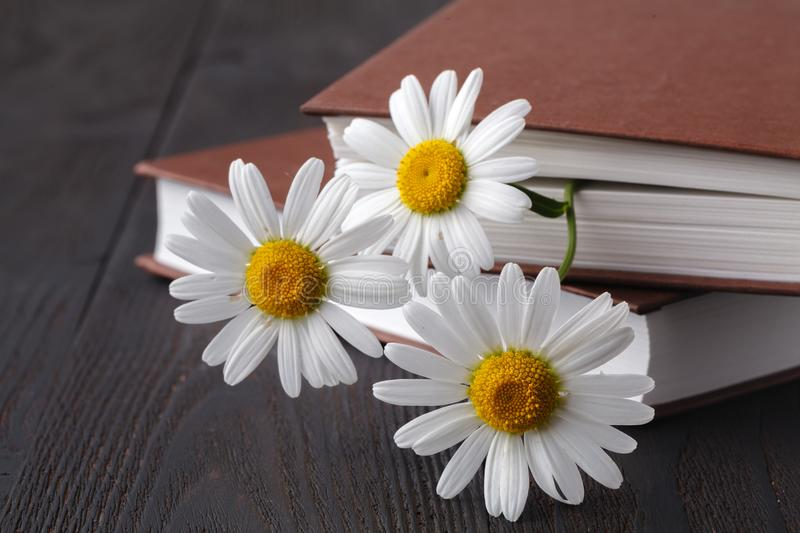 Books with bouquet of flowers stock photography