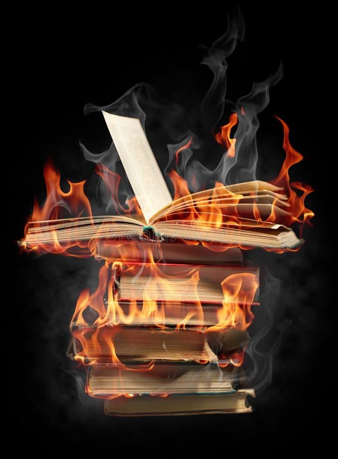 Books in fire vector illustration