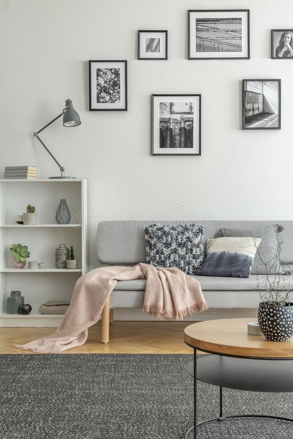 Bookshelf with knick knacks next to comfortable grey sofa in chic living room. Bookshelf with knick knacks next to comfortable grey sofa in chic room royalty free stock image