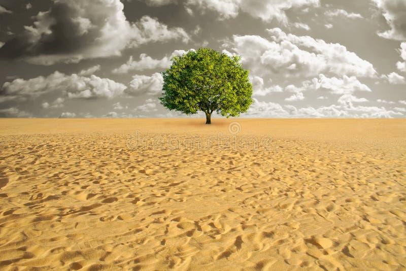 Boom alleen in woestijn stock illustratie