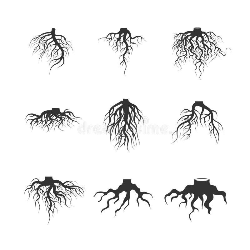 Boom en installatie ondergrondse wortels vectorreeks stock illustratie