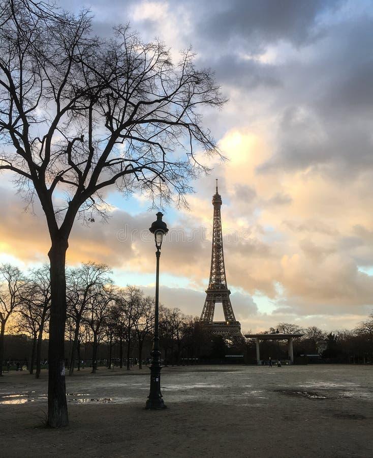 Boom en straatlantaarnecho verticaal bereik van de Toren van Eiffel bij zonsondergang stock afbeelding