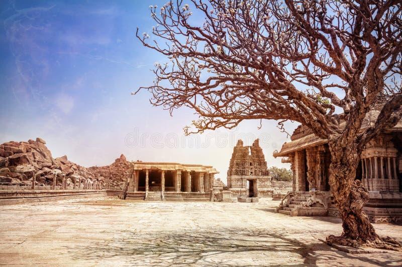 Boom en tempels in Hampi royalty-vrije stock afbeelding