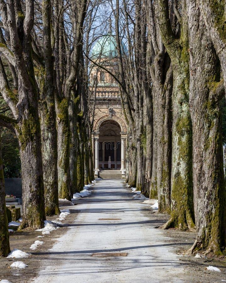 Boom gevoerde weg die tot de overkoepelde ingang aan Mirogoj Cemeter leiden royalty-vrije stock fotografie