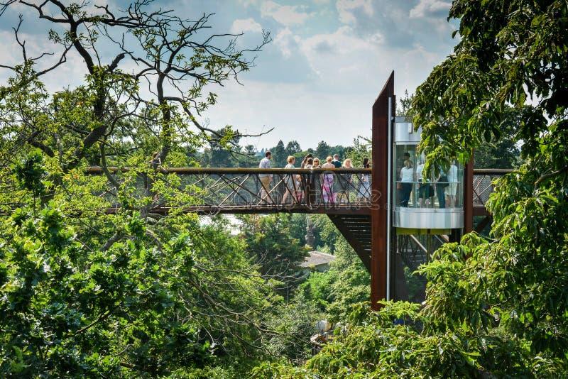Boom hoogste het wandelen landschap - Koninklijke Botanische Tuinen Kew royalty-vrije stock foto's