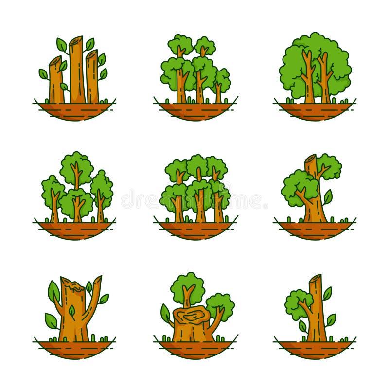 Boom, Installatie, Bos, Aard, Botanische Illustratie, Bomeninzameling royalty-vrije illustratie