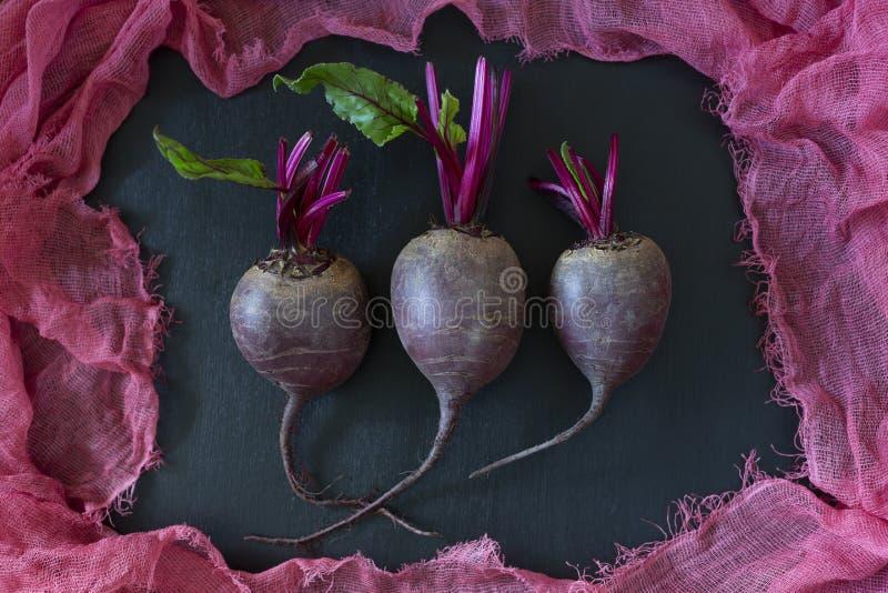 Boom kleine verse inlandse organische jonge bieten met groene die bladeren door purpere stof worden omringd royalty-vrije stock afbeelding