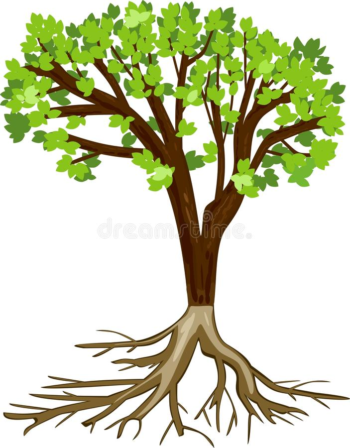 Boom met groene bladeren en wortels vector illustratie