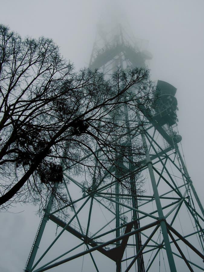 Boom op de achtergrond van een hoge metaaltoren in de mist royalty-vrije stock afbeelding