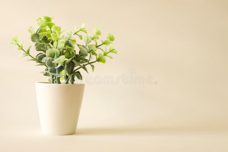 Boom op groene uitstekende stijlachtergrond stock foto's