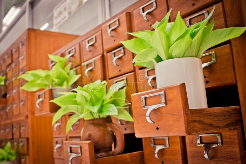 Boom op Open houten kabinetsdozen in Bibliotheek of het Indienen archief r stock foto