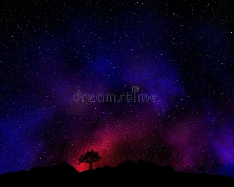 Boom tegen een nachthemel die wordt gesilhouetteerd stock illustratie