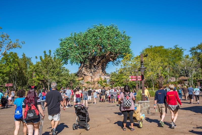 Boom van het Leven bij het Dierenrijk in Walt Disney World stock foto