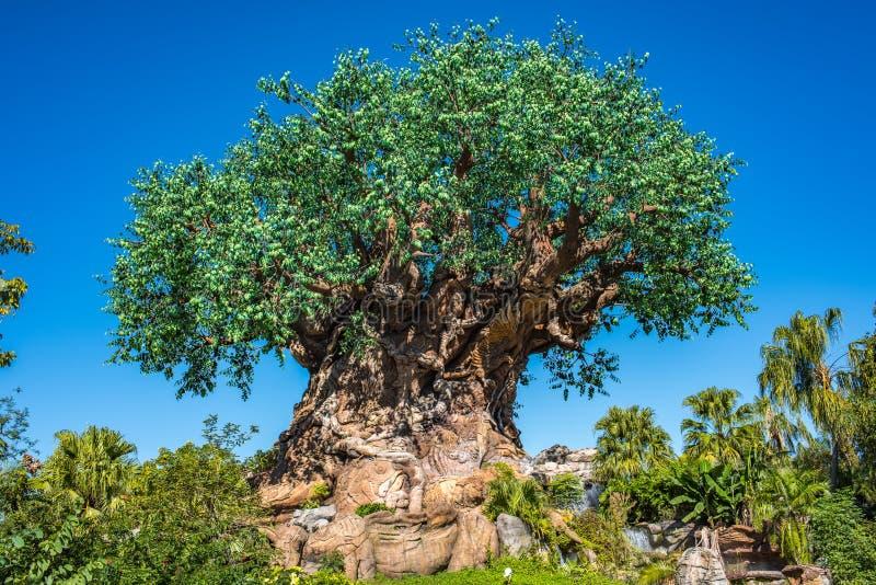 Boom van het Leven bij het Dierenrijk in Walt Disney World stock fotografie