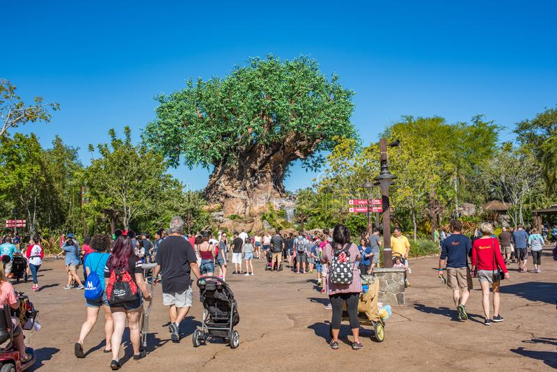 Boom van het Leven bij het Dierenrijk in Walt Disney World stock afbeelding