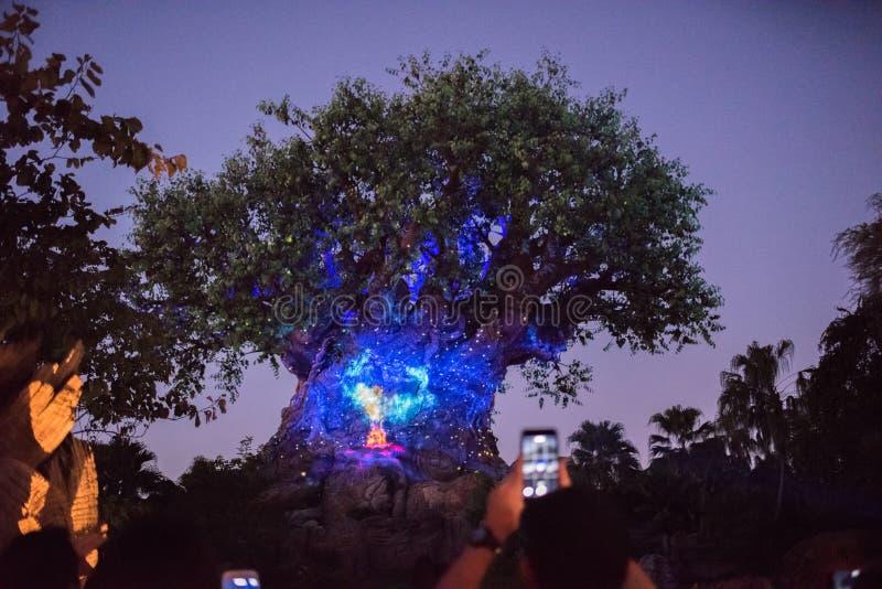 Boom van het Leven bij het Dierenrijk in Walt Disney World stock afbeeldingen