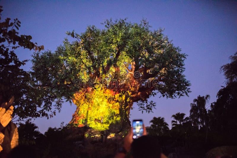 Boom van het Leven bij het Dierenrijk in Walt Disney World royalty-vrije stock fotografie