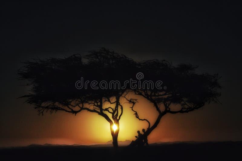 Boom in woestijn bij zonsondergangsilhouet van boom in duinen in Afrika met bergen stock foto