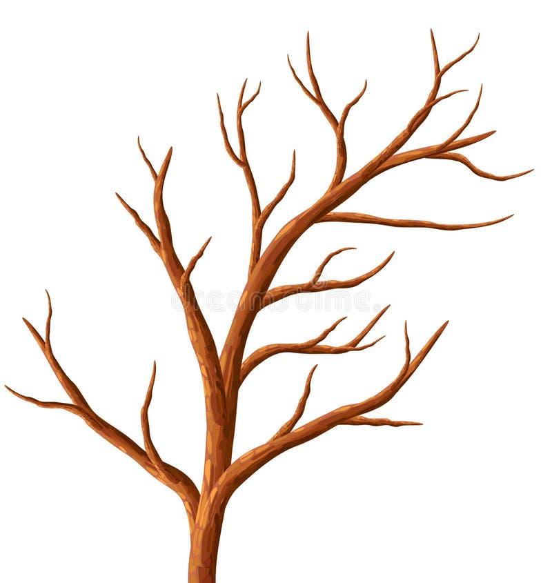 boom zonder bladeren vector illustratie illustratie