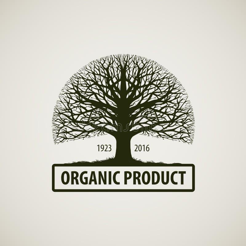 Boom zonder bladeren Aard of ecologieembleem eiken pictogram Organisch Product vector illustratie