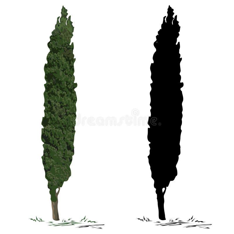 Boomcipres en silhouet van een cipres stock illustratie