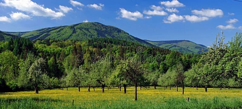 Boomgaard met aardig panorama van de bergen van Moravskoslezske Beskydy royalty-vrije stock foto