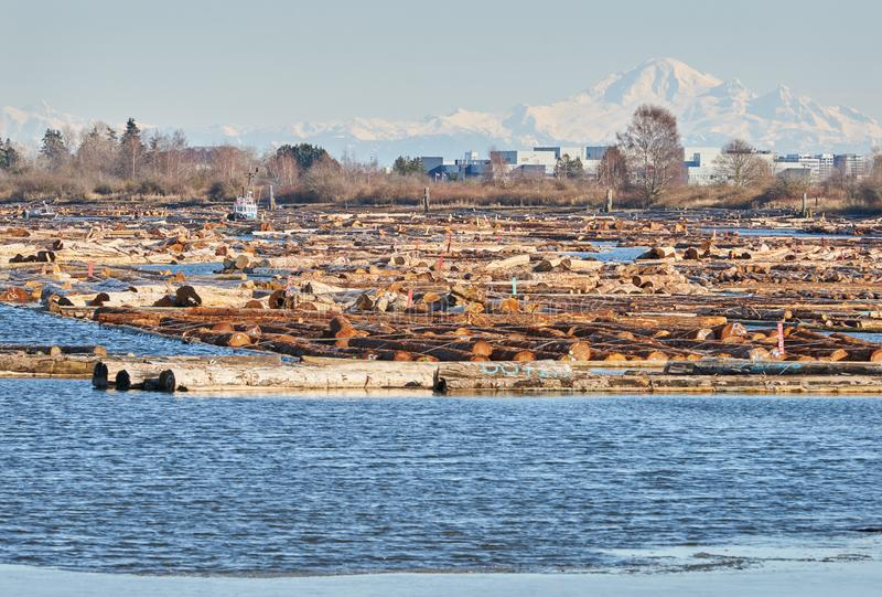 Booming Ground and Mt. Baker. Logbooms in an estuary on the Fraser River. Vancouver, British Columbia, Canada royalty free stock photos