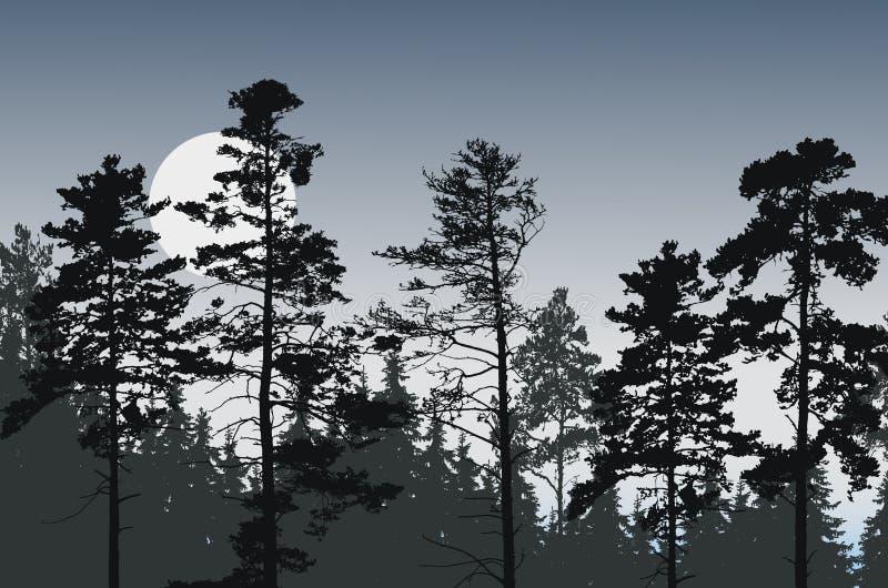 Boompieken van naaldbos onder nachthemel met volle maan o stock illustratie