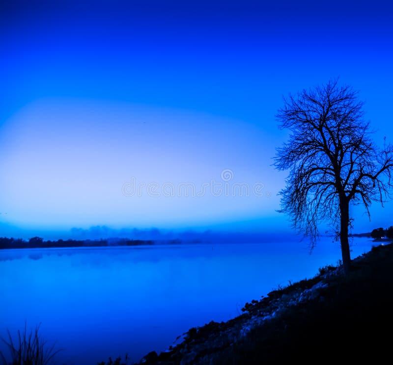 Boomrand van water onder blauw stock fotografie