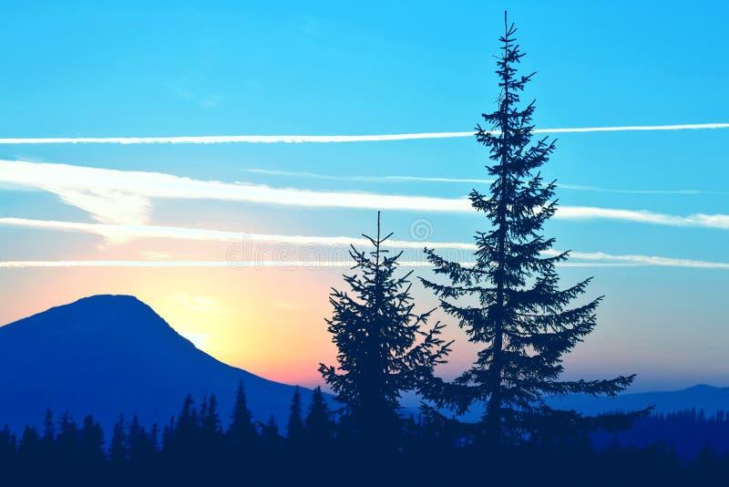 Boomsilhouetten in de zonsopgangbergen verbazende aard en landschappen stock afbeelding