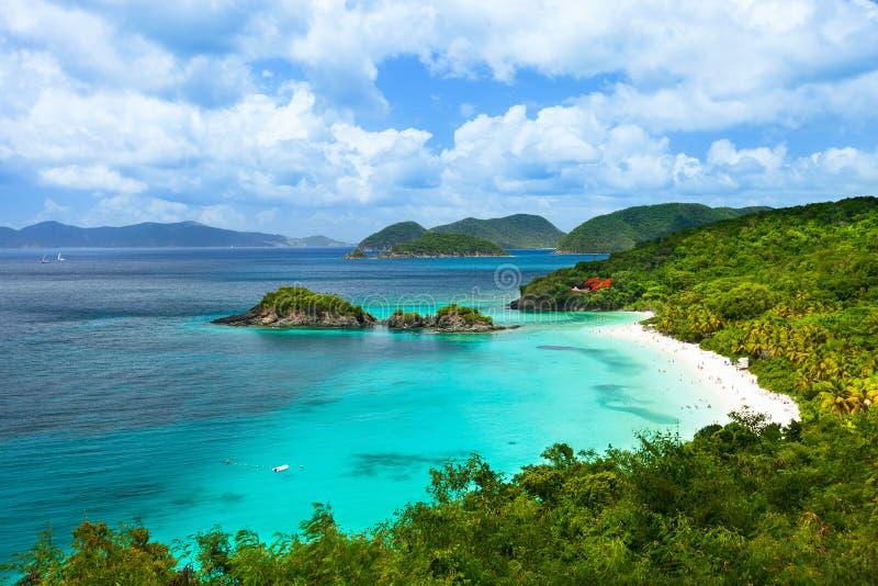 Boomstambaai op St John eiland, de Maagdelijke Eilanden van de V.S. stock foto